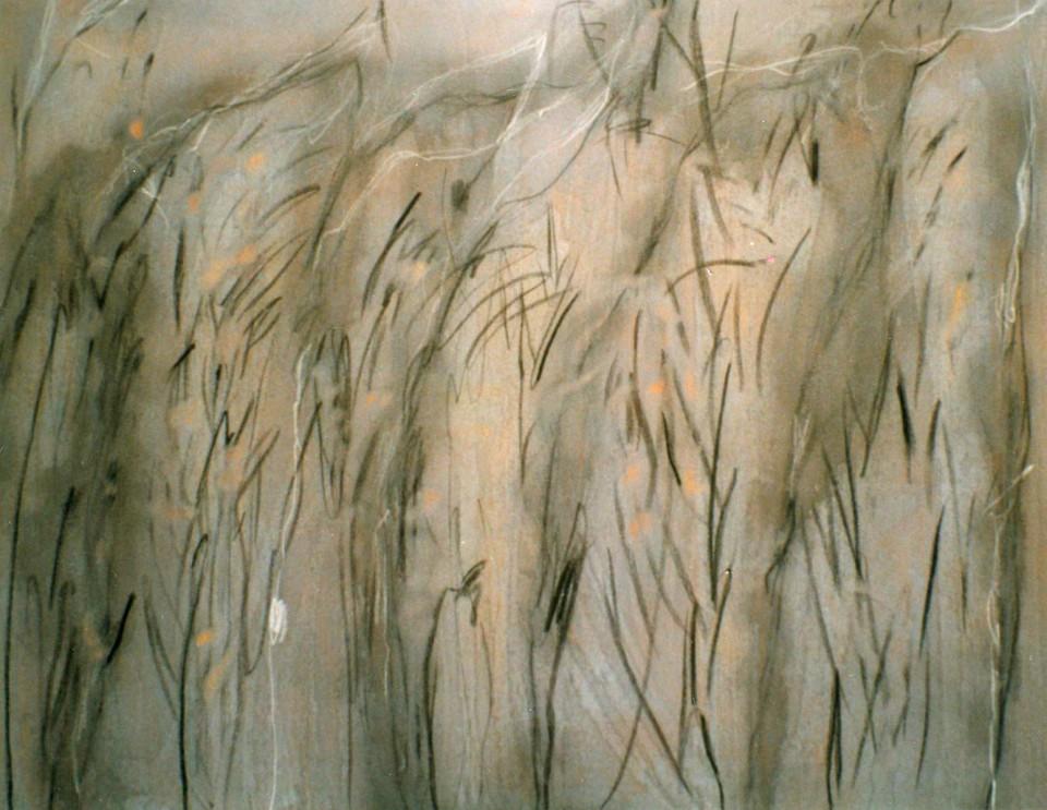6 (1998)