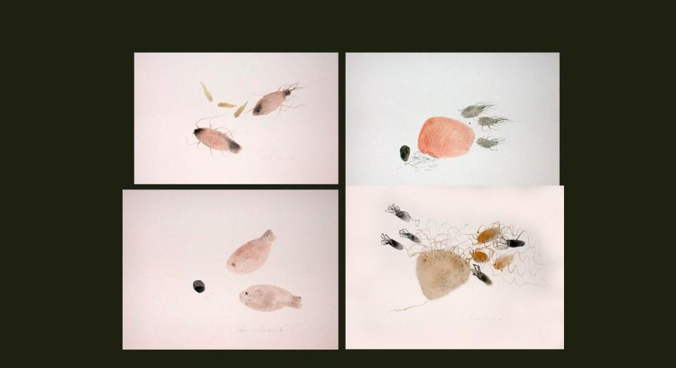 El mar, compo 2 - acuarelas - (2002) Serie EL MAR Acuarela, Gouache y lápiz sobre papel.