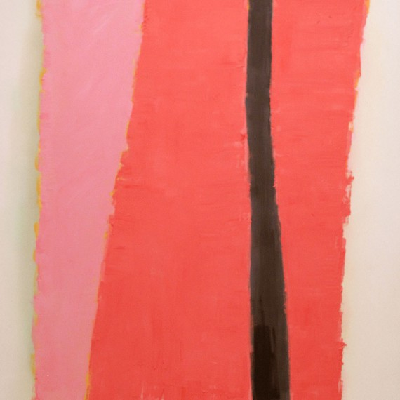 Cuadro 6 (2010) Acrílico sobre tela y caseína.