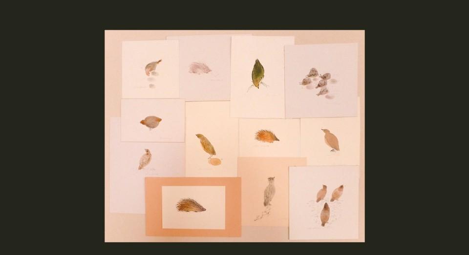 Pájaros varios 1 - acuarela (2002) Serie ANIMALES Acuarela, Gouache y lápiz sobre papel.