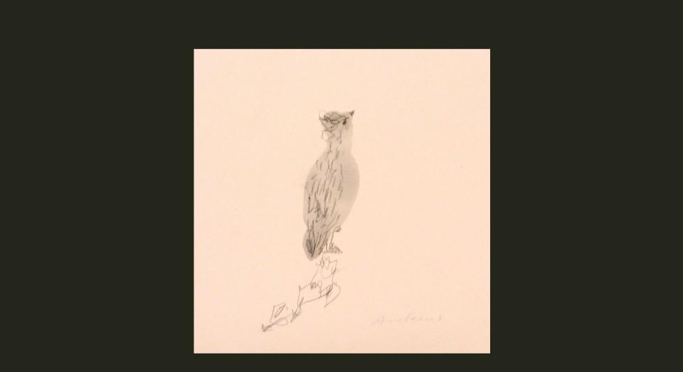 Pájaro 2 - acuarela (2002) Serie ANIMALES. Acuarela, Gouache y lápiz sobre papel.