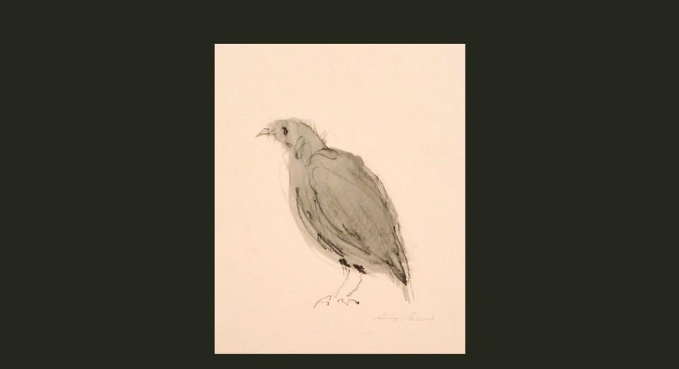 Pájaro 1 - acuarela (2002) Serie ANIMALES, Acuarela, Gouache y lápiz sobre papel.