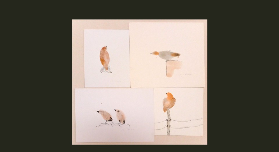 Pájaros varios 2 - acuarela (2002) Serie ANIMALES Acuarela, Gouache y lápiz sobre papel.
