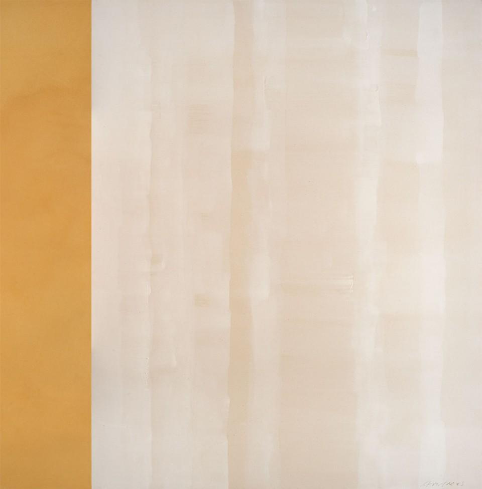 Cuadro 8 - 2005 Acrílico y carboncillo sobre tela y caseína. JARDÍN DE LOS FRAILES