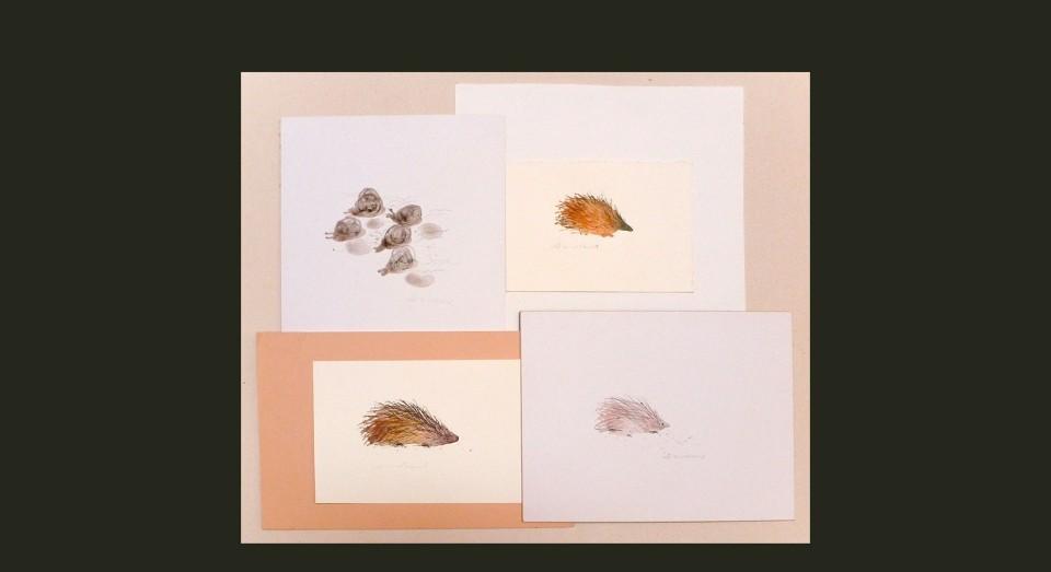 Animales bosque - acuarela- (2002) Serie ANIMALES Acuarela, Gouache y lápiz sobre papel.