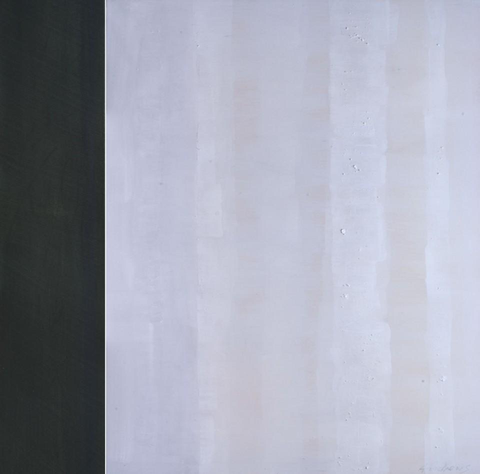 Cuadro 9 - 2005 Acrílico y carboncillo sobre tela y caseína. JARDÍN DE LOS FRAILES