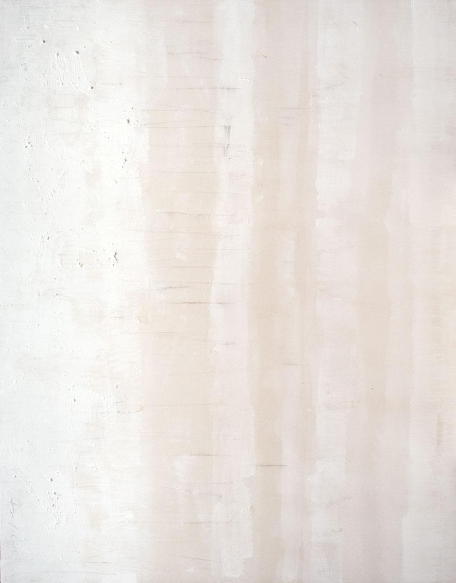 Cuadro 10 - 2005 Acrílico y carboncillo sobre tela y caseína. JARDÍN DE LOS FRAILES