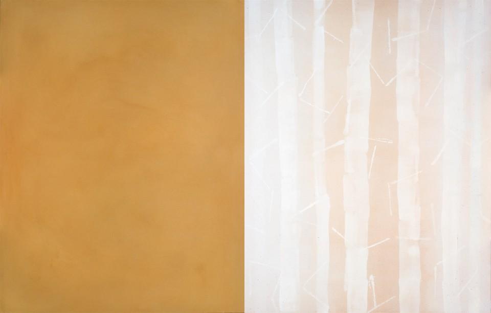 Cuadro 20 díptico - 2005 Acrílico y carboncillo sobre tela y caseína, 146 x 228 cm. JARDÍN DE LOS FRAILES
