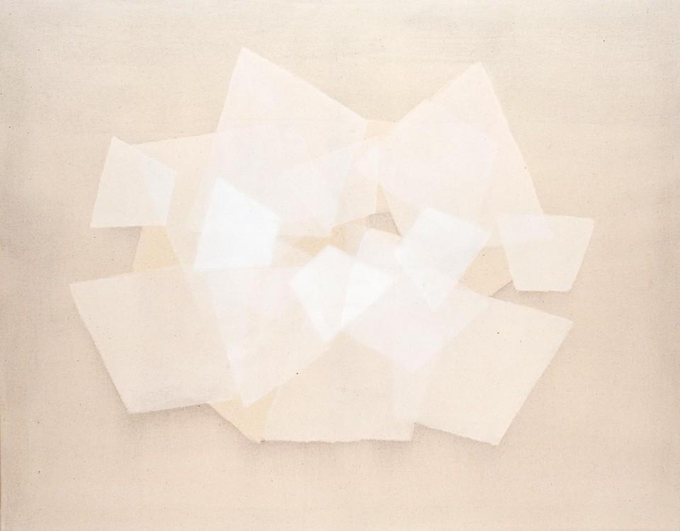 Cuadro 20 (2007) Acrílico y carboncillo sobre tela y caseína. 114 x 146 cm.