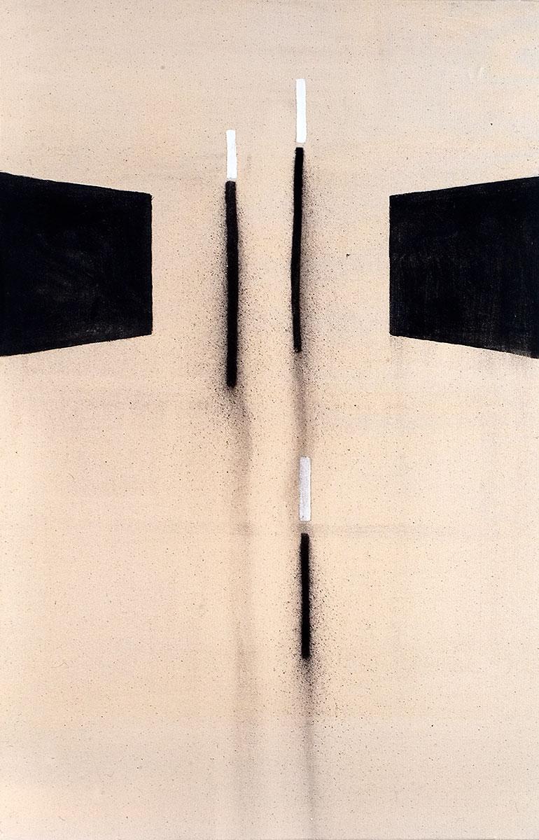 Cuadro 12 (2007) Acrílico y carboncillo sobre tela y caseína.
